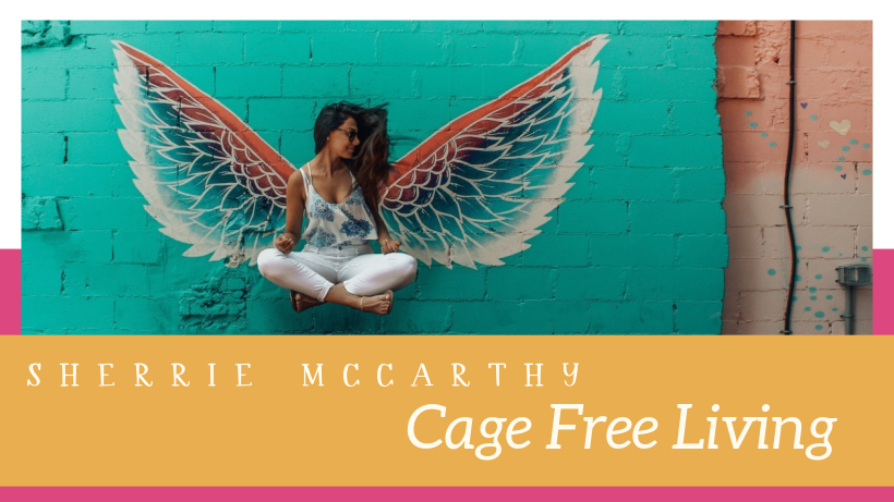cage free living with cageology